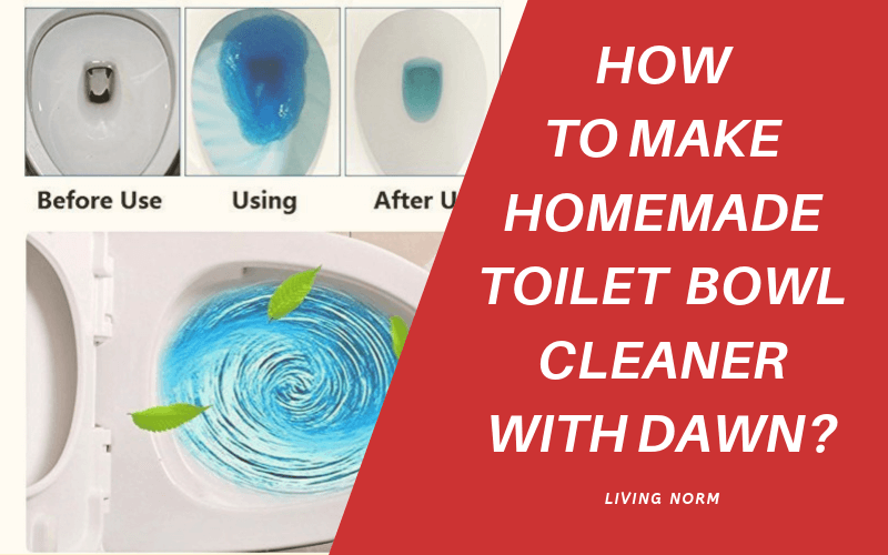 Homemade Toilet Cleaner with Dawn