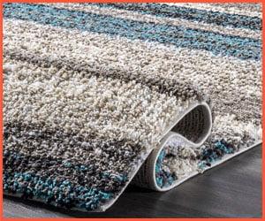 best color carpet to hide dirt
